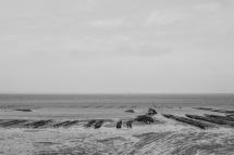 Oyster farming - Cabanajam